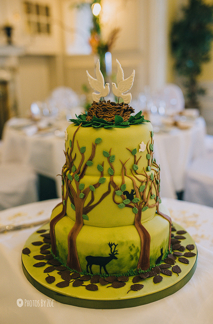 decoration gateau nature
